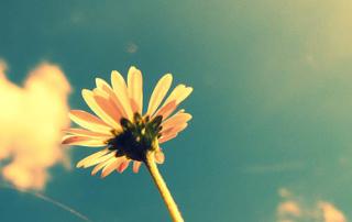 summer-22-small