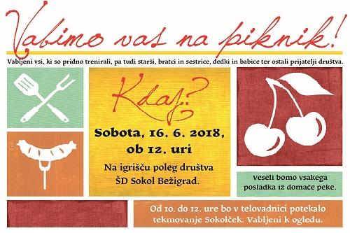 Društveni piknik in preizkus znanja za Sokolčka!